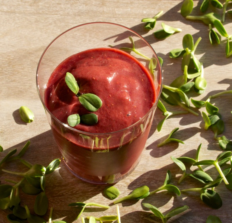 Raspberry - Sunflower Smoothie