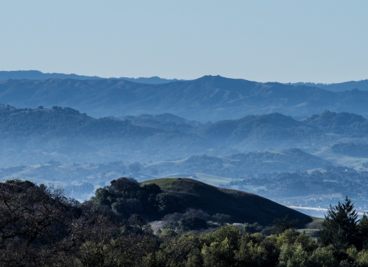 Sonoma County Views